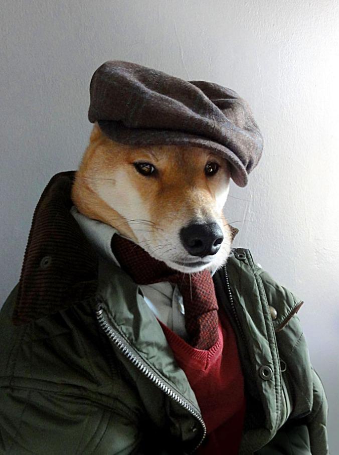 menswear dog3