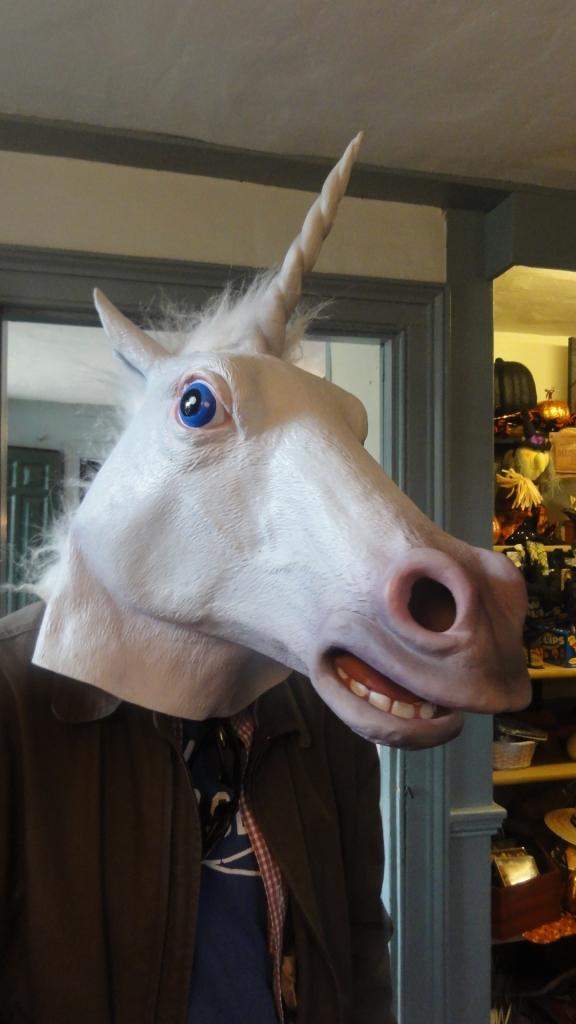 Matt the Unicorn